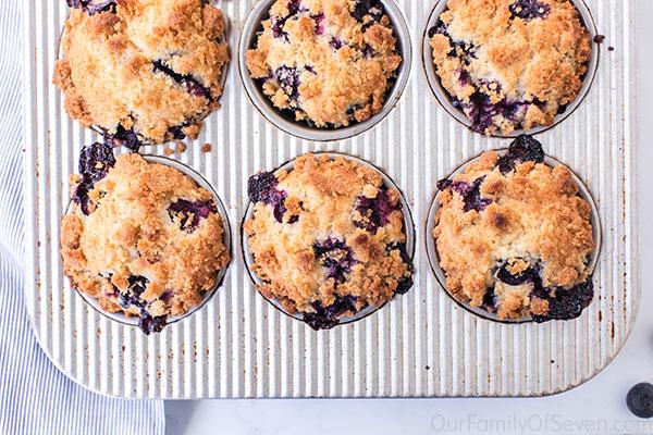 Fresh baked blueberry dessert muffins